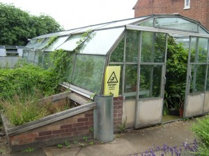 Belgrave Hall glasshouse