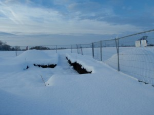 The trench at Marton under snow